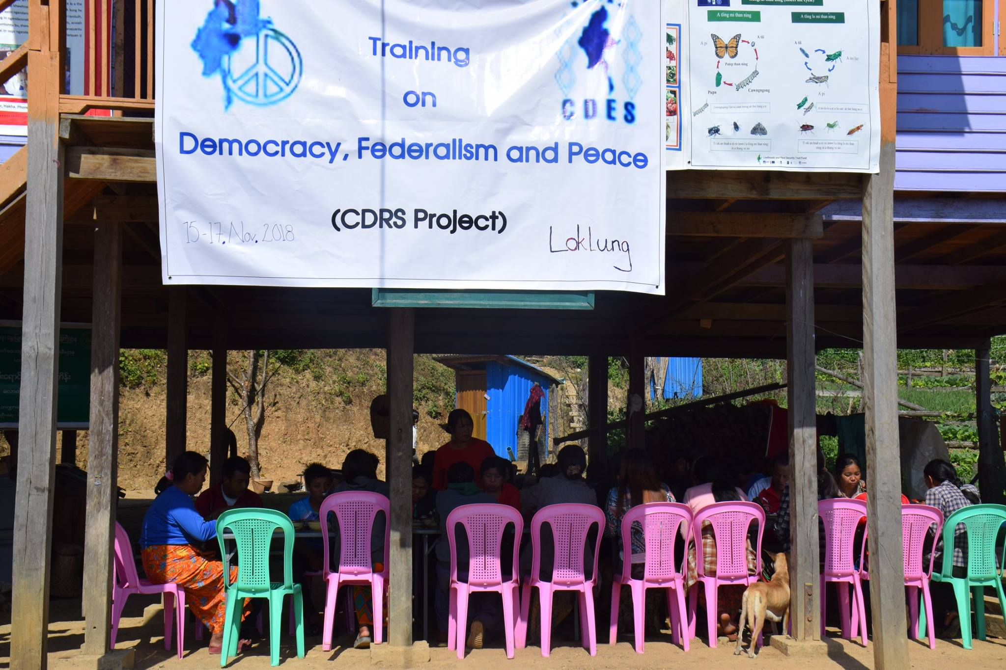 CDES activities in Rural Areas